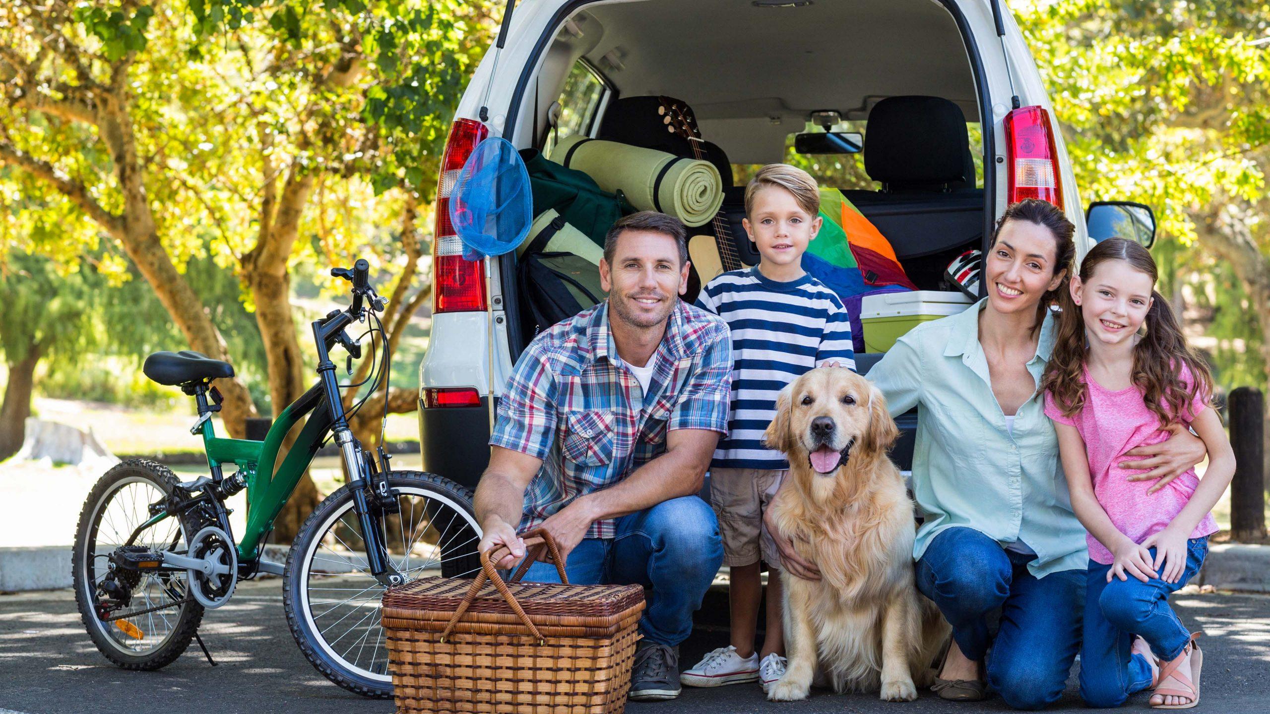 family size vehicle